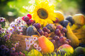 Garden autumn harvest fruit grass sunset Royalty Free Stock Photo