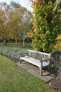 Garden bench in autumn english park Royalty Free Stock Photo