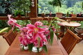 Garden cafe: pink lilies Stock Photography