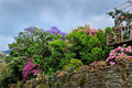 https---www.dreamstime.com-stock-photo-spring-trees-colorful-flowers-garden-vibrant-image111524588