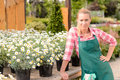 Garden center woman worker potted daisy flowers Royalty Free Stock Photo