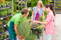 Garden centre salesman offer potted plant Royalty Free Stock Photography