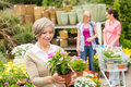 Garden centre senior lady hold potted flower Stock Photos