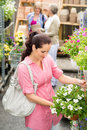 Garden centre woman hold white surfinia flower Stock Photo
