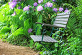 Garden chair Royalty Free Stock Image