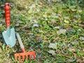 Garden cleaning, small shovel, rake, Royalty Free Stock Photo