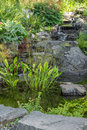 Garden decorated with stones and aquatic plants detail of a summer Stock Images
