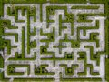 Garden Decoration is a maze with Green leaves wall fence with co Royalty Free Stock Photo