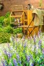 Garden Design With Flowers.
