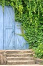 Garden door covered by liane plant Stock Photography