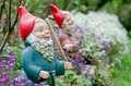 Garden dwarf on a natural background Royalty Free Stock Photos
