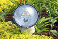 Garden Flood Light