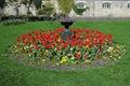Garden Flowerbed Royalty Free Stock Photo