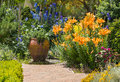 Garden flowers in bloom in english garden Royalty Free Stock Photo