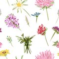 Garden flowers seamless pattern for your design this is file of eps format Stock Photography