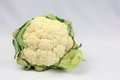 Garden Fresh Cauliflower Royalty Free Stock Photo