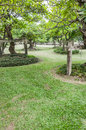 Garden with a freshly mown lawn landscape of Royalty Free Stock Image