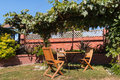 Garden furniture under grapevine pergola Royalty Free Stock Photo