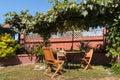 Garden furniture under grapevine pergola Royalty Free Stock Photo