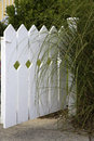 Garden gate a protects a back yard Royalty Free Stock Photography