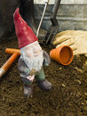Garden Gnome Stock Photography