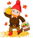 Garden gnome with harvest illustration of cute Royalty Free Stock Images