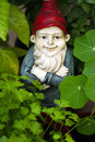 Garden gnome in a herbal bed still life og looking up Stock Photo