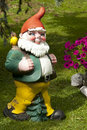 A Garden Gnome in the Swiss Alps Royalty Free Stock Images