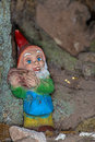Garden gnome in a tree cave Royalty Free Stock Photo