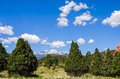 Garden of the gods photo rocky mountains and red rocks at park near denver colorado Stock Photography