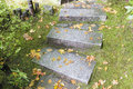 Garden granite stone steps asian inspired slabs with moss and fall leaves Royalty Free Stock Image