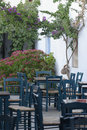 Garden of greek tavern typical whitewashed with matching green tables and chairs and bougainvilleas beginning to flower Royalty Free Stock Photo