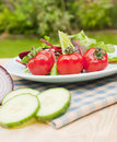 Garden green salad with tomato outdoor Royalty Free Stock Image