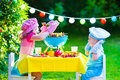 Garden grill party for kids Royalty Free Stock Photo