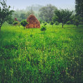 Garden and hay piles green grass Royalty Free Stock Images