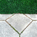 Garden hedge and stone tiles Royalty Free Stock Photo