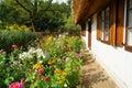 Garden at home - Farm Royalty Free Stock Photo