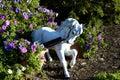 Garden Horse Royalty Free Stock Photo