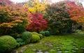Garden In Kyoto Japan