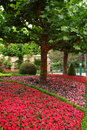 Garden landscaping in theme park a flowerbed with impatiens colorful bloom and holiday lights flickering the tree at europa rust Stock Photo