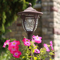 Garden lantern decorated with pink petunias Stock Photos