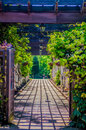Garden Lattice walkway with stone pavers and vine flowers throug Royalty Free Stock Photo