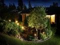 Garden Lights Illumination