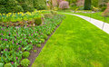 A garden with lush green lawn and tulip flower bed pathway in Stock Photo