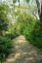 Garden nature park Royalty Free Stock Photos