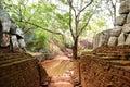 The garden near Sigiriya (Lion's rock) Stock Image