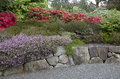 Garden with nice rocks and beautiful spring flowers Royalty Free Stock Images
