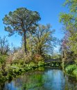 Garden of Ninfa, landscape garden in the territory of Cisterna di Latina, in the province of Latina, central Italy. Royalty Free Stock Photo