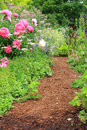 Garden path Stock Photography