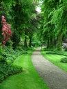 A garden path Royalty Free Stock Photo